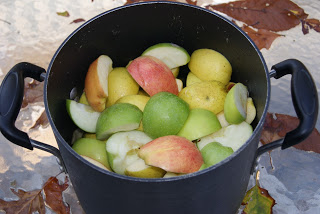 Fall Applesauce: Better Than Apple Pie