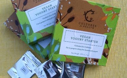 Easy Homemade Vegan Yogurt: No Equipment Required